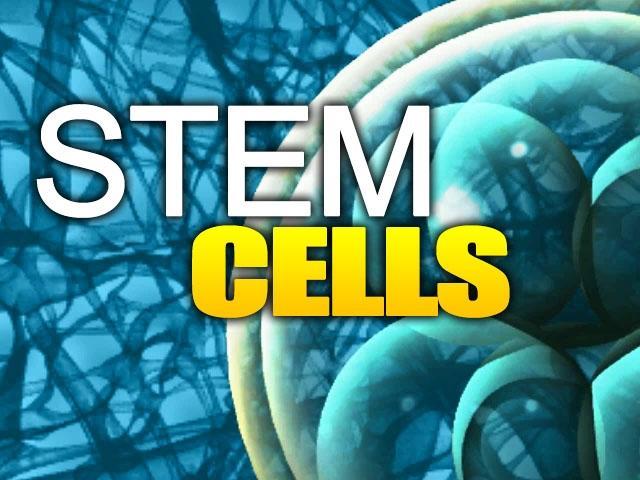 Đã tìm được người hiến tế bào gốc